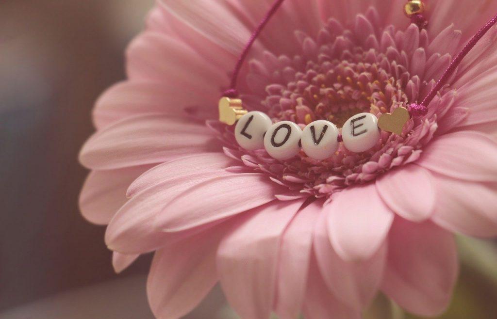 love, bracelet, gerbera