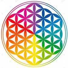 flower of life rotated